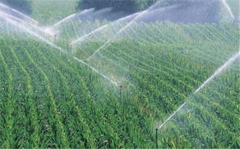 外文翻译--节水灌溉(共7页)(组图)